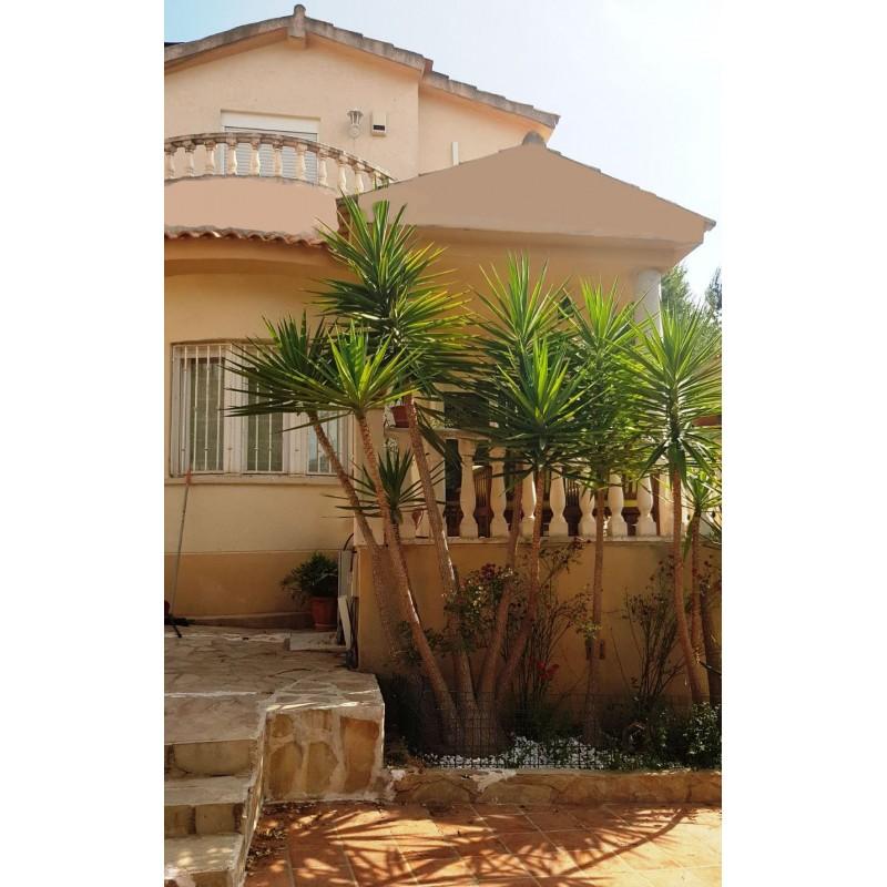Villa T5 à Villamarchante